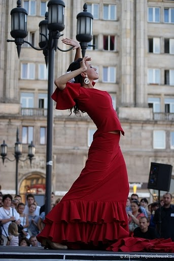 is_tn_Flamenco_nr_2_139