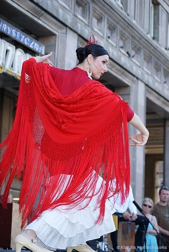 is_tn_Flamenco_nr_2_357